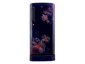 LG 190 L 4 Star Inverter Direct-Cool Single Door Refrigerator GL-D201ABPY, Blue Plumeria